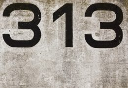 313 Angel Number